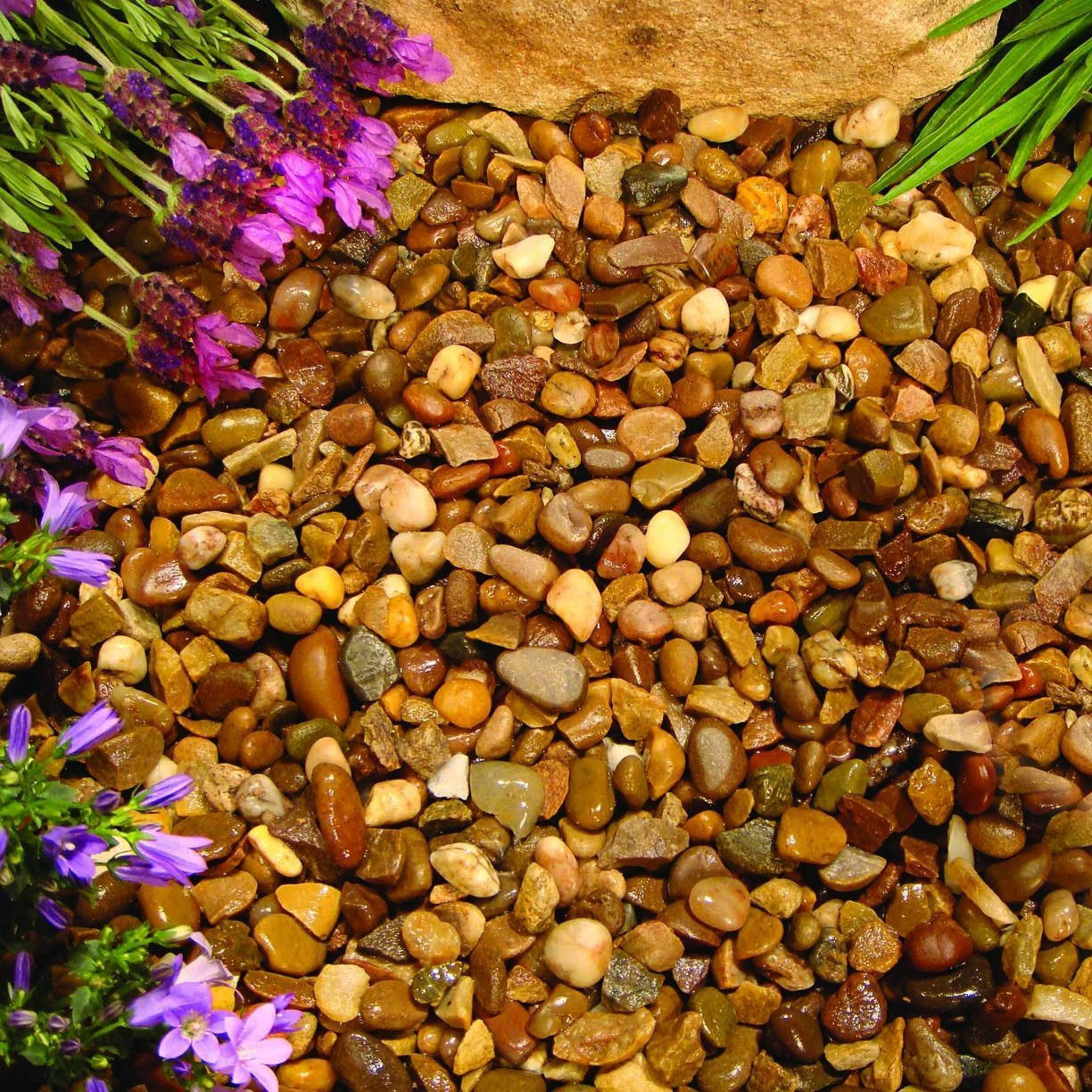 Decorative Gravel & Chippings